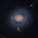 M94 - Croc's Eye Galaxy,                                Tim Hutchison