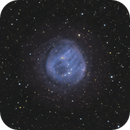 Sh2-200 - Bear Claw Nebula / 2020,                                Mikko Viljamaa