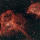 Heart and Soul Nebulae,                                David Johnson