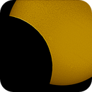 Partial Solar eclipse,                                Ian Papworth