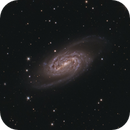 NGC 2903 integration Marathon,                                Stephan Linhart