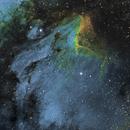 IC 5070 The Pelican Nebula,                                Daniel Higgins