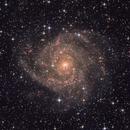 IC 342, The Hidden Galaxy,                                Sergey Trudolyubov