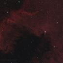 NGC7000 The North America Nebula,                                David Wills (PixelSkies)