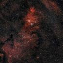 Christmas Tree Nebula NGC_2264_2021-01-13_420mm,                                Derek Dailey