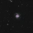 M61,                                acotner