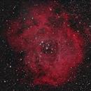 Rosette Nebula,                                whitenerj