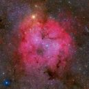 IC 1396,                                Wei-Hao Wang