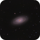 Messier 64,                                Steven Gill (Parkesburg Observatory)