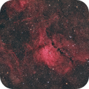 NGC6823 and Friends,                                Gabe Shaughnessy