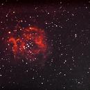 NGC 2244 Rosettennebel,                                Silkanni Forrer