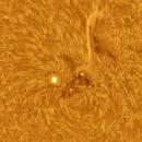 AR2765-Sun in Ha,                                Anis Abdul