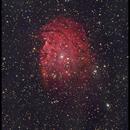 MonkeyHead Nebula : NGC 2174,                                Catanonia