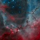 The Rosette Nebula Core - Animal Farm,                                Andreas Eleftheriou