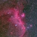 """NGC2177-Seagull Nebula,                                Makoto""""G-H""""Shindou"""