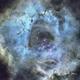 Rosette Nebula First Light,                                Carl Weber