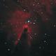 NGC 2264: Cone Nebula,                                rhedden