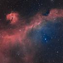 IC2177 (Seagull nebula),                                ParyshevDenis