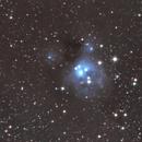 NGC 7129 - Reflection nebula in Cepheus,                                Benny Colyn
