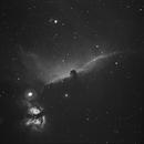 IC434,                                Bradisback