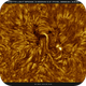 AR2770 Sunspot with Light Bridge in HA, Inverted, 08-09-2020,                                Martin (Marty) Wise