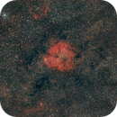 IC1396,                                Jean-Pierre Bertrand