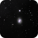 M58 Barred Spiral Galaxy (NGC4579),                                Dean Glace