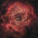 Caldwell 49 - The Rosette Nebula,                                Evelyn Decker