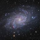 Triangulum Pinwheel Galaxy - M33,                                Dave (Photon)