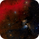 M78 Deep Sky West,                                Craig Prost