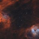 IC405 & IC410 in HOO • Flaming Tadpoles,                                Douglas J Struble