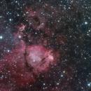 NGC 896 Fish Head Nebula,                                Richard H
