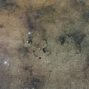 Snake nebulae,                                David