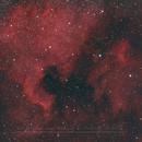 NGC7000 & IC5070 - North America Nebula and The Pelican,                                Christophe Perroud