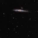 NGC4631,                                Stefano
