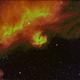 IC 2177 - Seagull Nebula - 494mm - 20190206 - HOS (12X900s Ha,Si,Oiii), RGB (34X60s),                                Gabe van den Berg
