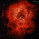 NGC2237 (Rosette Nebula),                                Jeffrey Rossini