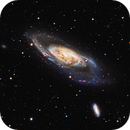 M106,                                Mark Holbrook