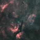 IC 1318+NGC 6888,                                Christian63