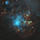 The Tarantula Nebula,                                Matthew Sole