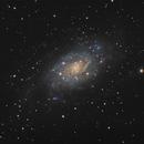 NGC 2403,                                Patrice RENAUT