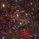 An interesting field in Cygnus,                                PJ Mahany