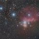 Cinturão de Órion -  Orion Belt,                                Daniel Schek