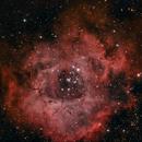 Rosette Nebula,                                CitySpace Astro