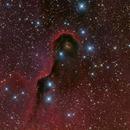 Elephant Trunk Nebula, IC 1396, HRGB Image,                                Eric Coles (coles44)