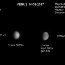 Venus UV de jour,                                JAUME Nicolas