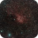 A tuned down version of the Lion nebula,                                Dennys_T