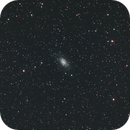 NGC 2403 cropped,                                Bob Scott