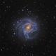 Messier 83 - The Southern Spiral,                                Salvatore Grasso