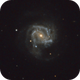 M 61 mit Supernova SN AT2020jfo,                                Martin Luther